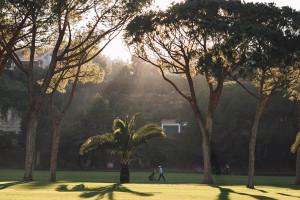 Reasons to play golf Marbella